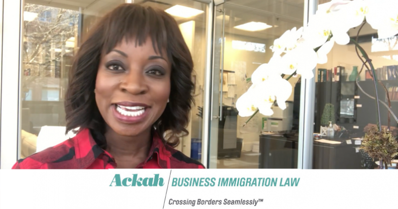 What is Cross-Border Business Immigration Law?